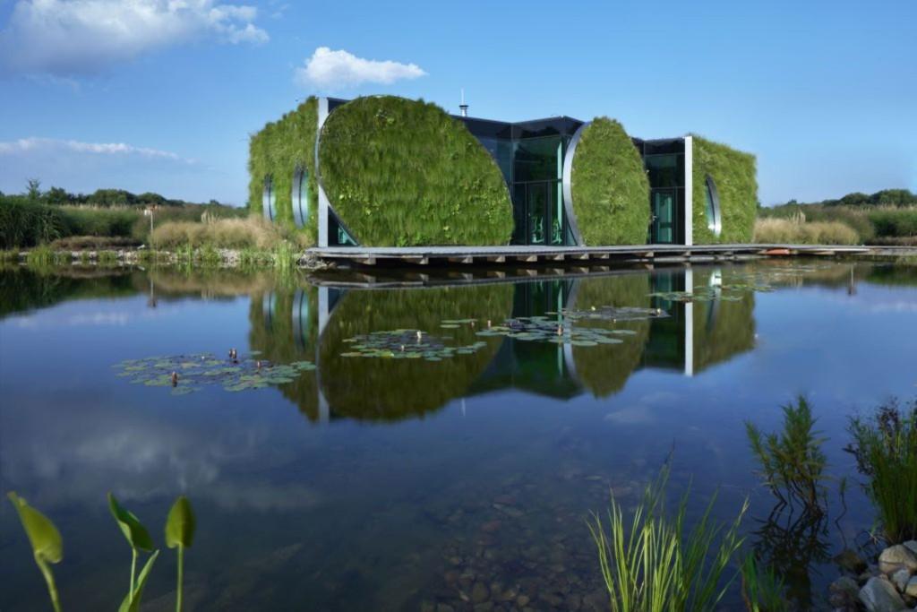 Jak dostat přírodu do města a zadržovat vodu v krajině prostřednictvím výstavby zelených budov?